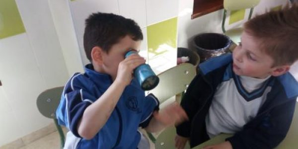 experimentos_educacion_infantil5